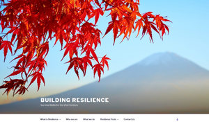 Screenshot for Building Resilience